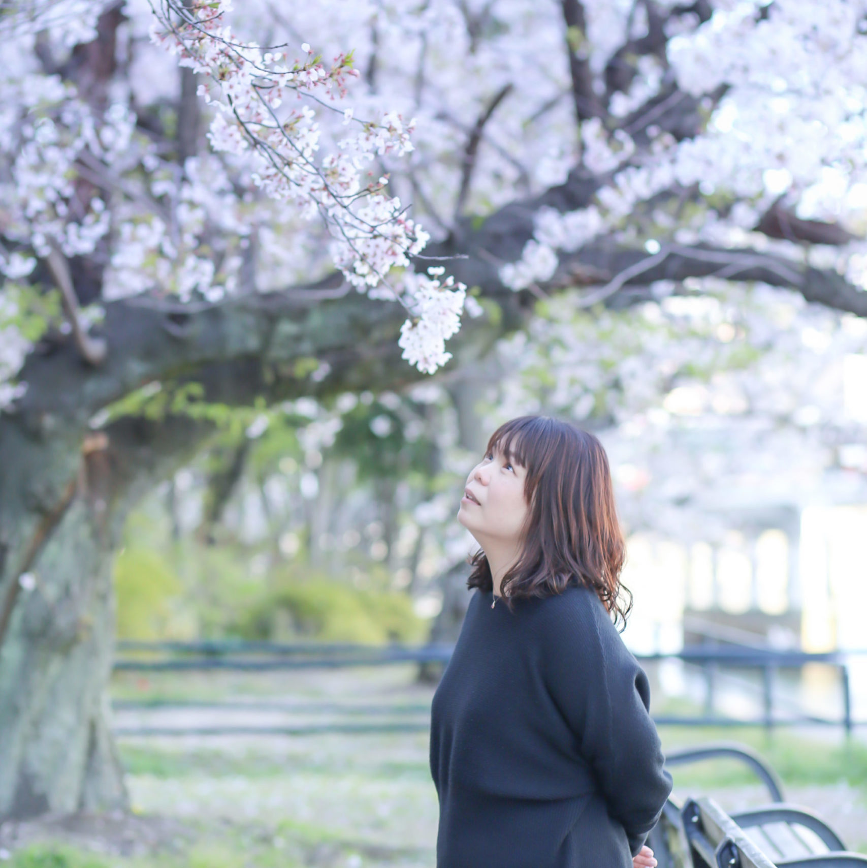 教員メッセージ 寺藤 美喜子メイン画像